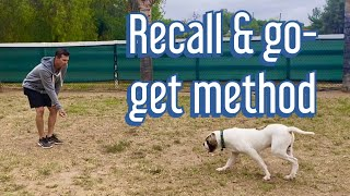 Teach your dog the 'come' command