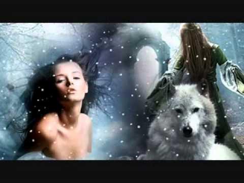 Reflexiones De Lobo Solitario Youtube