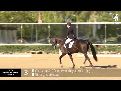 USDF Introductory Test B with Lilo Fore