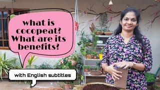 కోకోపీట్ అంటే ఏమిటి?దాని ఉపయోగాలు ఏమిటి??What is cocopeat?What are it's benefits??