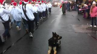 Christmas Parade Toronto 2010 ( Epic Down Stay )