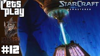 STARCRAFT: BROOD WAR #12 - Die Befreiung von Shakuras ► Let's Play