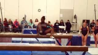 Ursinus Gymnastics Mock Meet 11/21/14