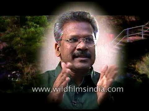 Mani Ratnam, Indian film director speaks about cinema