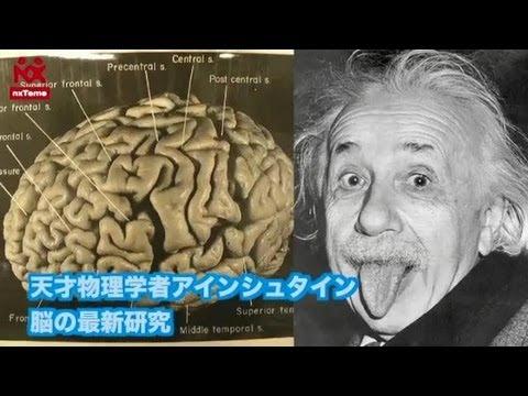 天才物理学者アインシュタイン ...