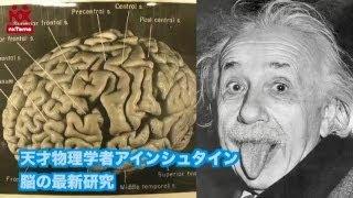 天才物理学者アインシュタイン 脳の最新研究