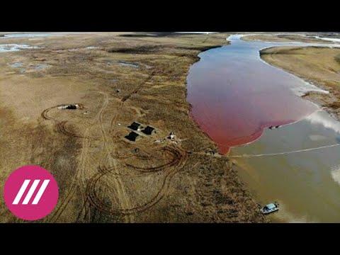 Экологическая катастрофа в Норильске: десятки тысяч тонн нефти вылились в реку // Здесь и сейчас