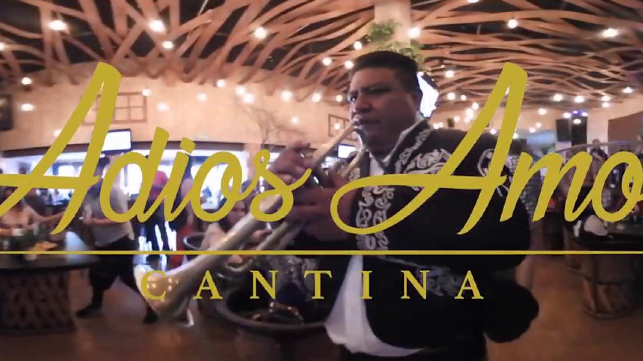 In the bar queretaro - 2 10