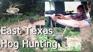 Wild Hog Hunting in East Texas, dropping big boars!