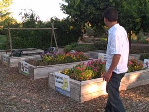 Gardening In The Desert Southwest   Food Crops You Can Grow In St George  Utah
