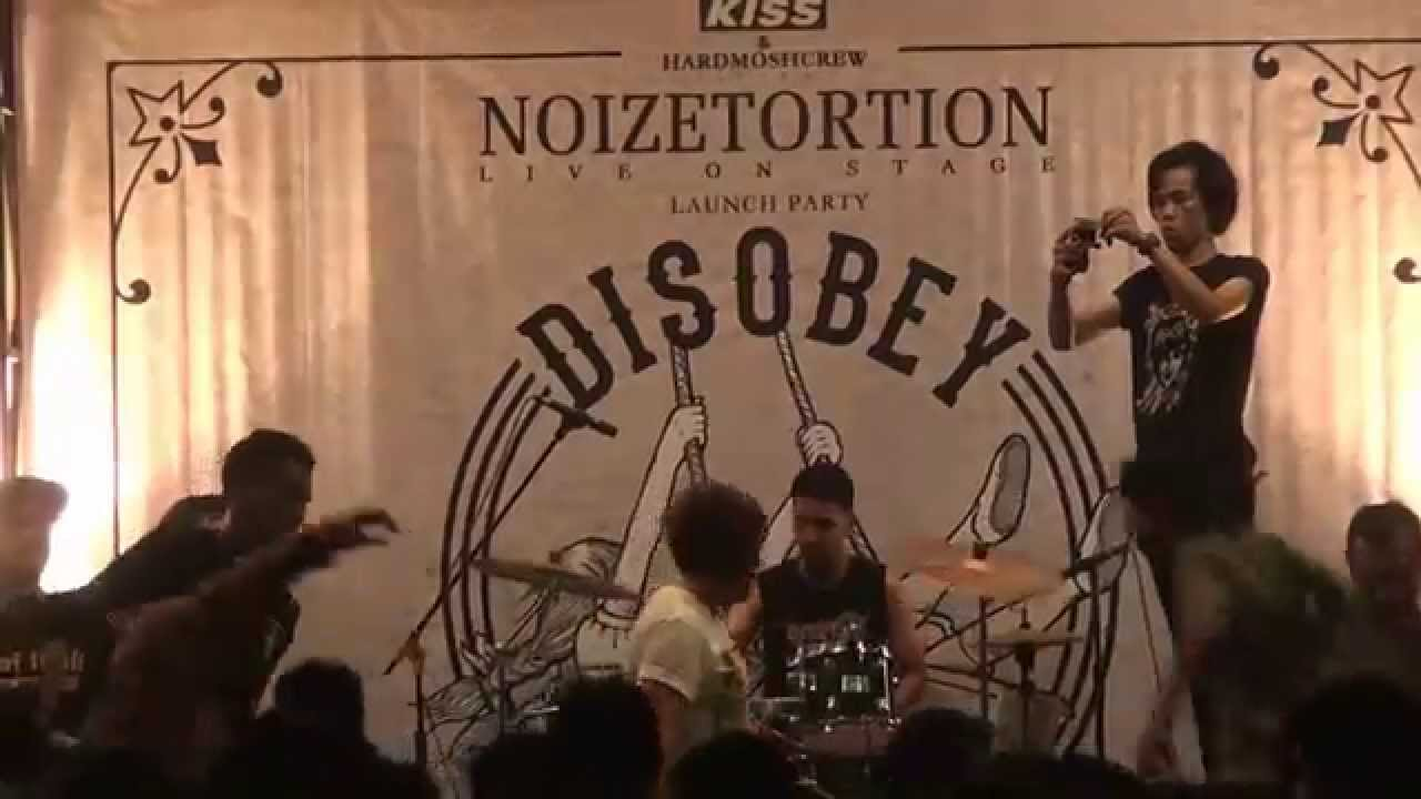 Disobey - Momentum