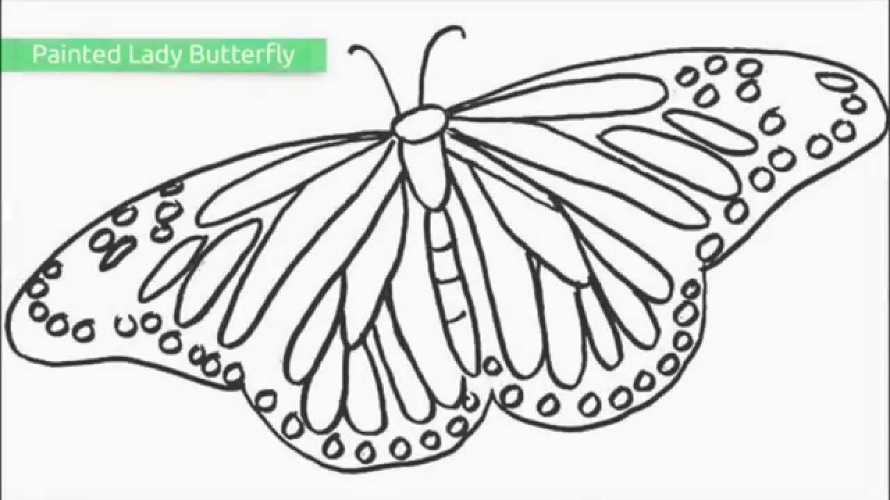 top 25 free printable butterfly coloring pages youtube - Printable Butterfly Coloring Pages