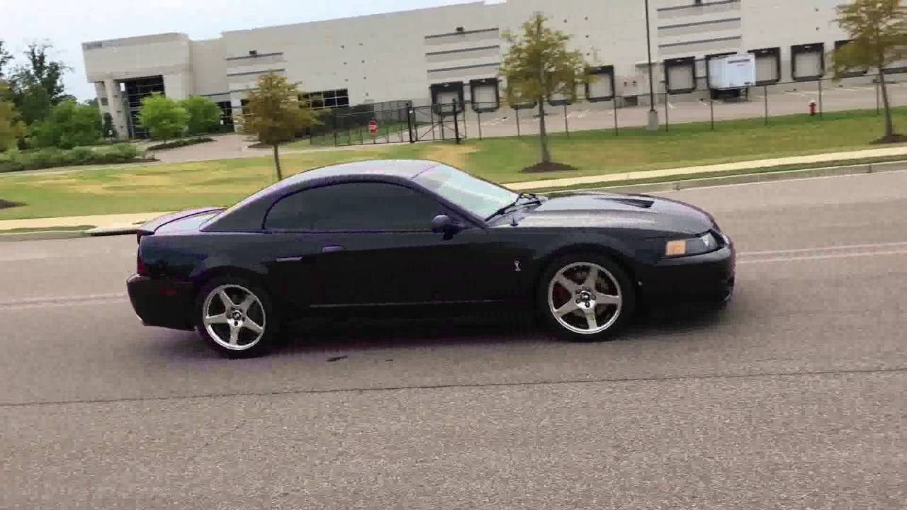 2004 cobra with bassani catback exhaust start up normal driving and flybys