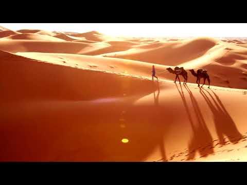 Ali Kuru-Lost_Bedouin