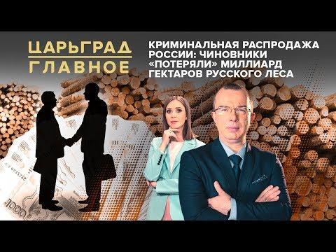Криминальная распродажа России: чиновники «потеряли» миллиард гектаров русского леса