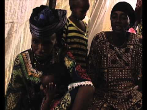 Niger: Malian Refugees Seek Shelter