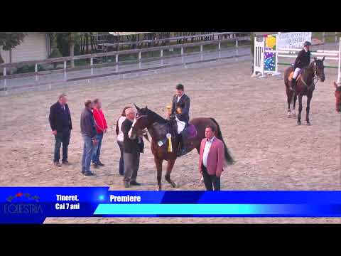 Live Streaming - Bucuresti Romania - Equestria - 13 Octombri