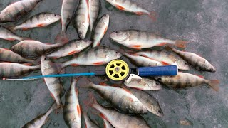 ВЕЧЕРНИЙ КЛЕВ ОКУНЯ зимняя рыбалка 2020 ЖОР ОКУНЯ В ФЕВРАЛЕ супер рыбалка
