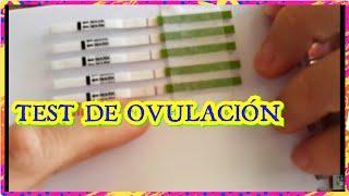 TEST+OVULACIÓN+positivoCoincidió+MAMÁ de 6 /familia NUMEROSA ESPECIAL