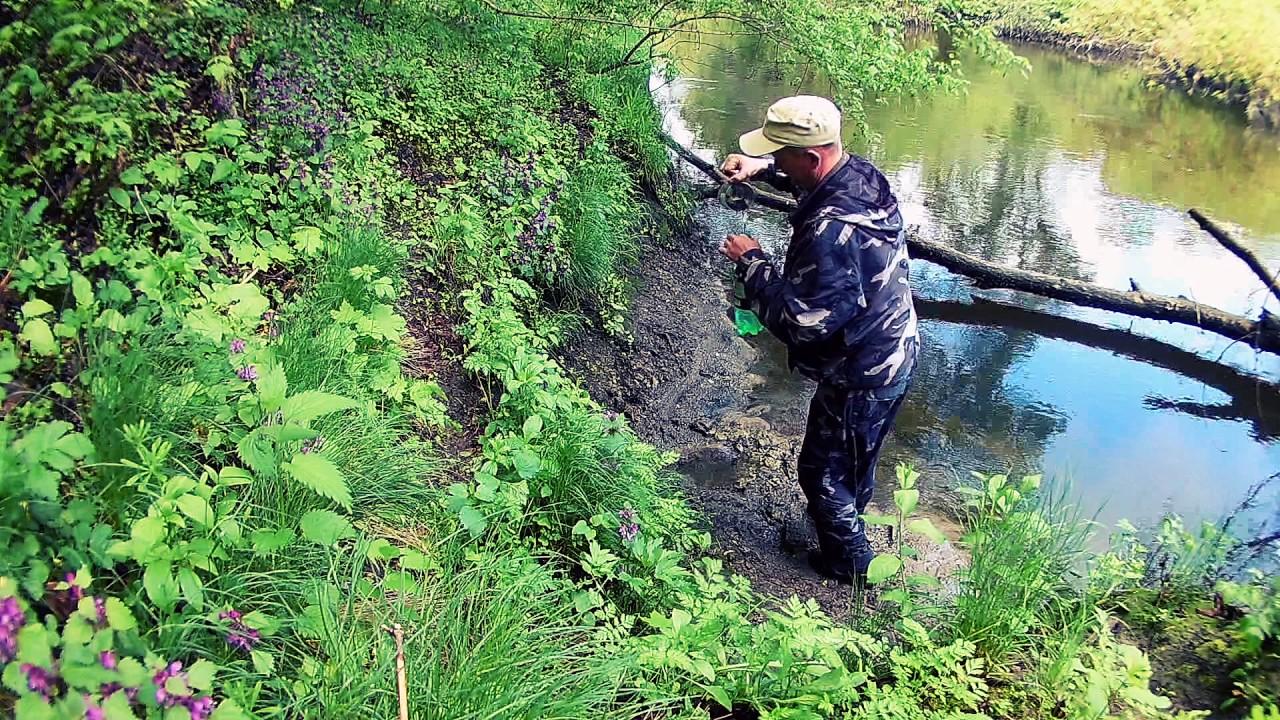 куда поехать на рыбалку за сазаном