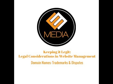 Domain Names - Trademarks and Disputes
