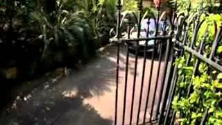 видео Горнолыжные курорты Австралии