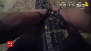 У Флориді поліцейський приборкав крокодила на подвір