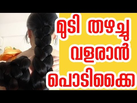 Hair Growth Tips In Malayalam Language - മുടി തഴച്ചുവളരാൻ  ചില എളുപ്പവഴികൾ