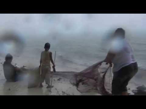 Fishing with net, Aitutaki, January 2013