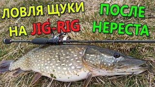 ЩУКА НА СПИННИНГ В АПРЕЛЕ Рыбалка на щуку 2020 Ловля щуки на спиннинг на джиг риг