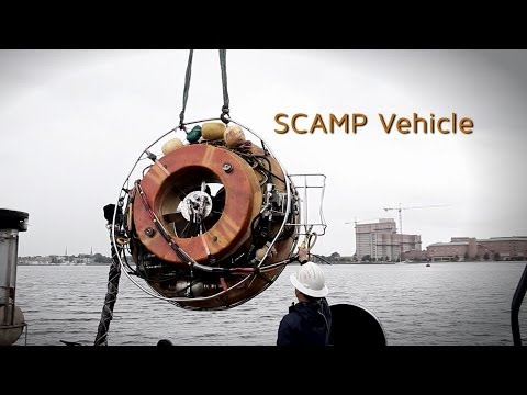 Seaward Marine Services, Inc. Underwater Hull Cleaning