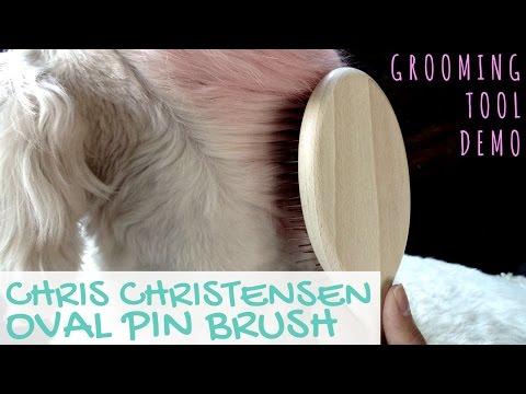 Goldendoodle Grooming Tools Demo: Chris Christensen Oval Pin Brush