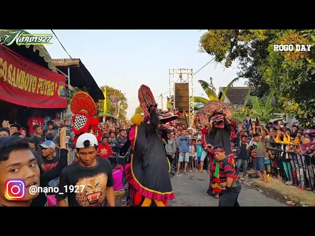 Rogo Samboyo Putro Live Bakalan Grogol Kediri
