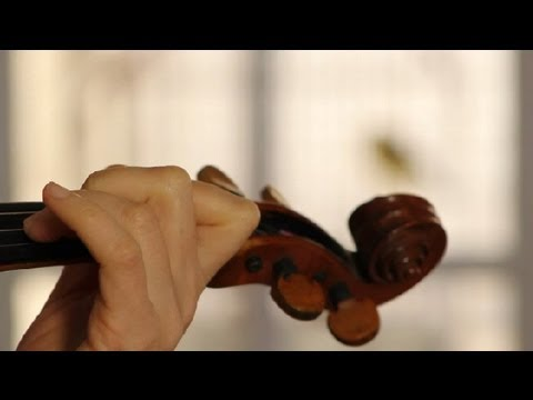 Musical Instruments for Trembling Hands : Violin Concepts