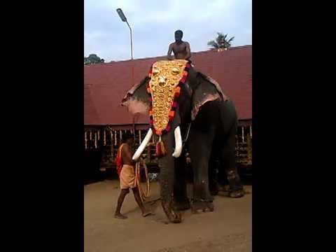 Thrikkadavoor Shivaraju in Kadavoor 2014