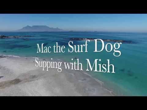 Mac Surf Dog go supping