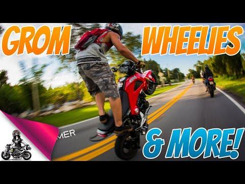 Honda Grom Wheelie Photos | Stunt Lot | Group Ride | Parking Garage Shenanigans