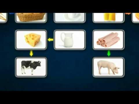 O que são Commodities ?