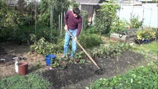 видео Разные методы определения кислотности почвы