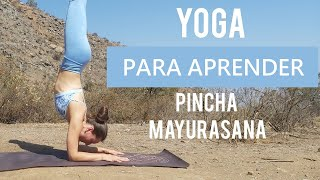 YOGA PARA PRINCIPIANTES - Pincha Mayurasana | Clase completa de vinyasa yoga | MalovaElena
