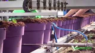 Visser Horti Systems - Pic O Mat Greenline For Pot Plants