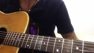 Guitar những đóm mắt hoả châu