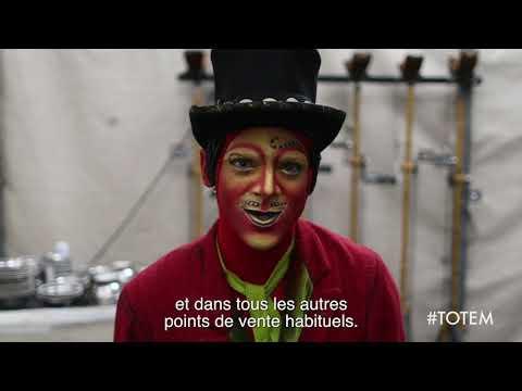 Cirque du Soleil : TOTEM
