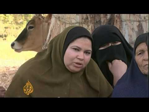 Egypt farmers seek return of 'seized' land