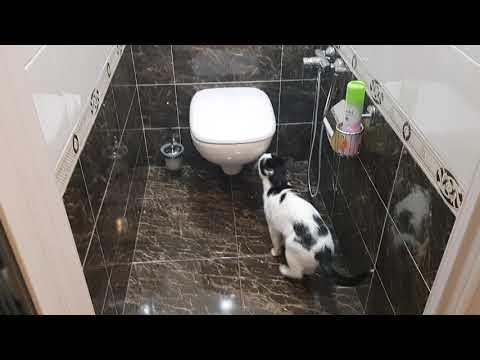 Ремонт ванной комнаты и туалета. Наслаждение ближе чем Вы думаете!!!