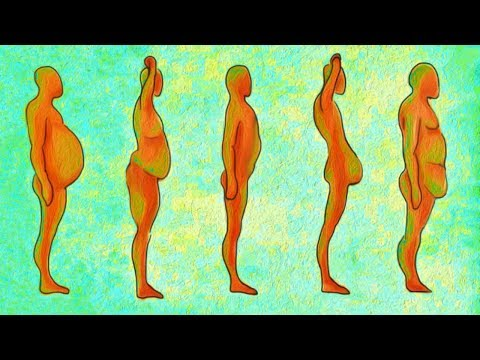 5 видов любимых животиков: худеем по науке, или как правильно убрать жир на животе