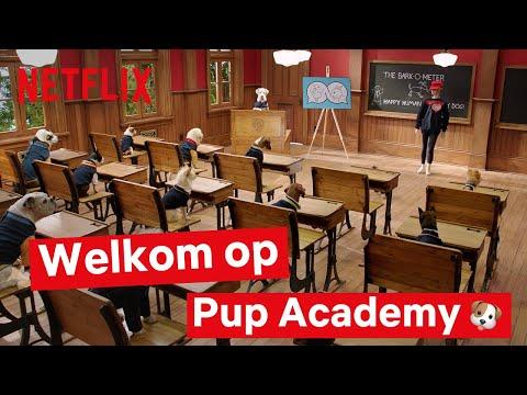 pup-academy:-een-introductie-|-populaire-kinderseries-|-netflix