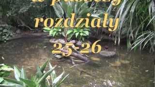 W pustyni i w puszczy, rozdziały 25-26 Henryk Sienkiewicz,audiobook - videobook