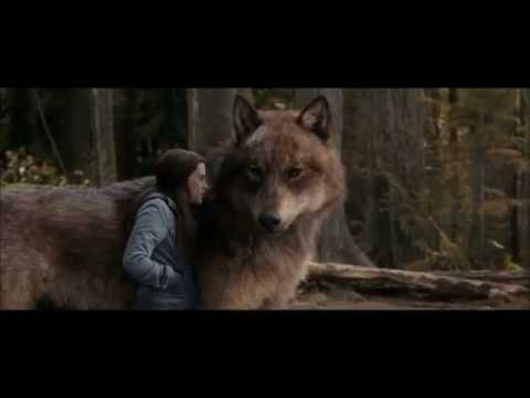 Twilight Wolves-Heroes mp3