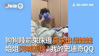 狗狗睡前來床邊哀求出借娃娃 姐姐哭喊割捨:我的史迪奇QQ|抱娃娃|睡覺|玩偶